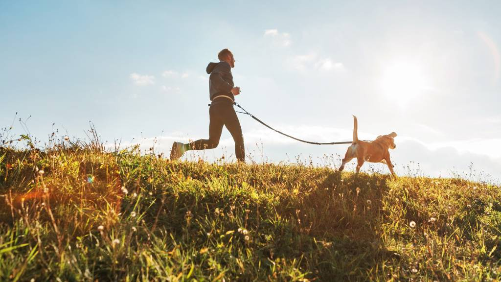 Man jogging with dog on a leash in grassy park