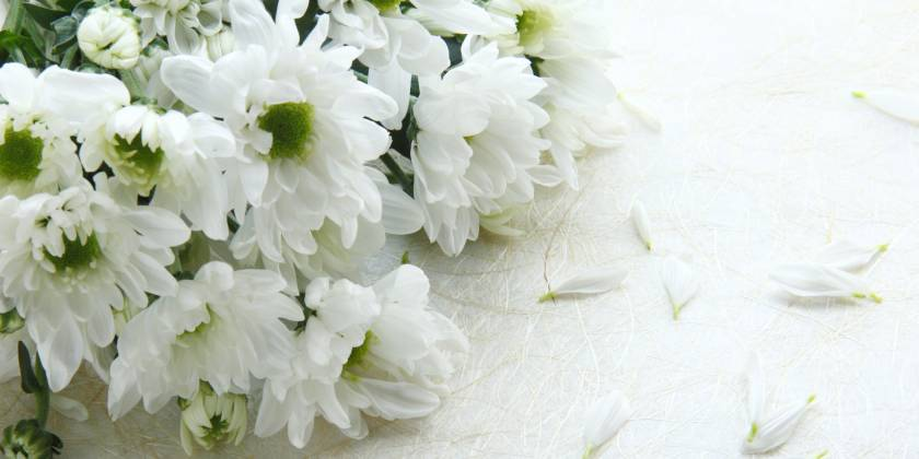 bunch of white flowers for a funeral