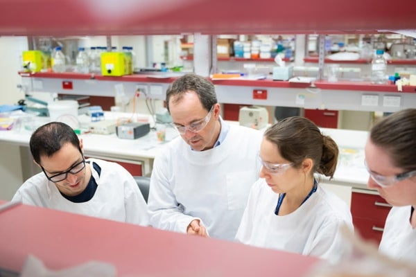 Research Opportunities, Grants and Scholarships