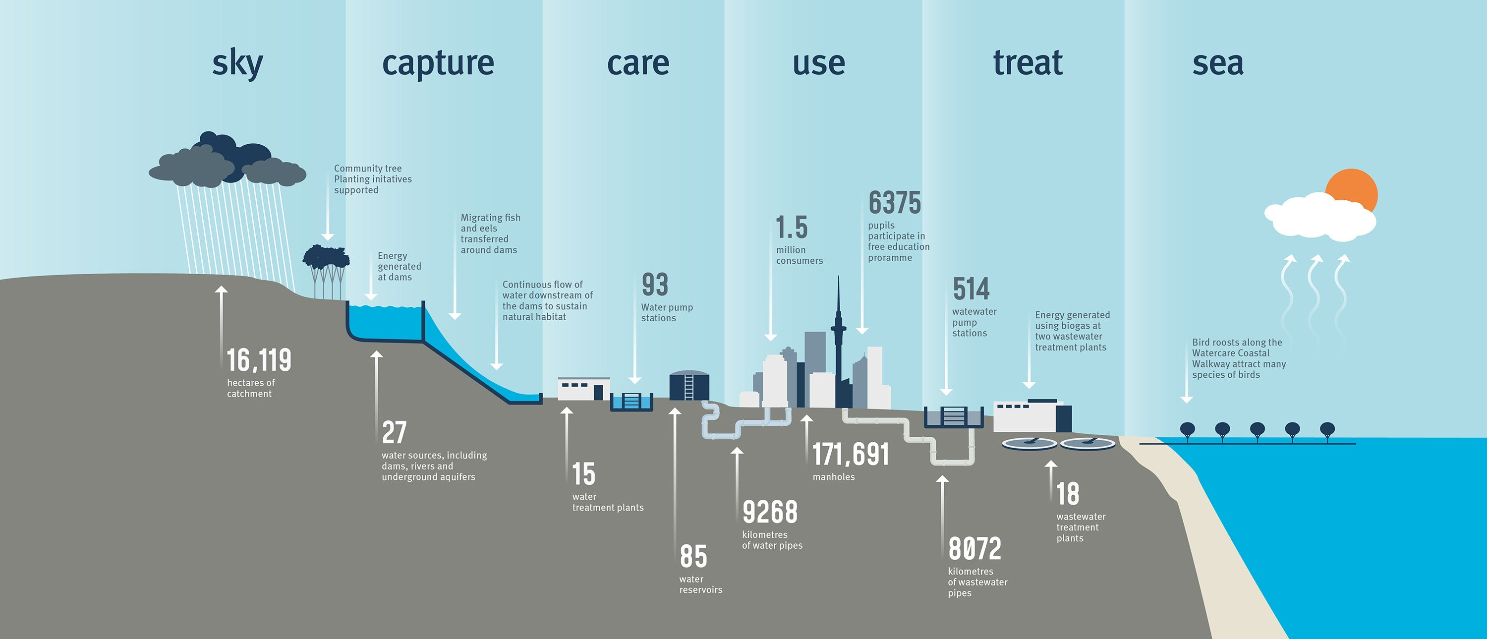Image showing water's journey from the sky to the sea and Watercare's role in the process
