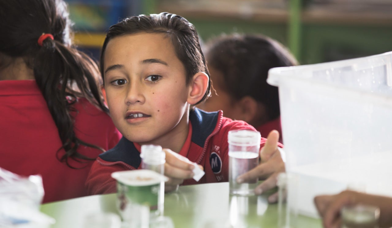School student engages with water sample in Watercare's Water Education Programme.
