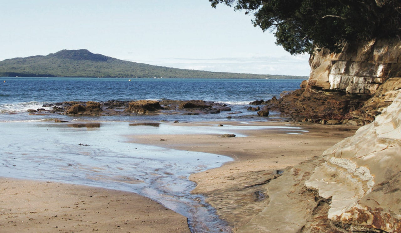 A suburban stream flows into the Waitematā Harbour on a North Shore beach.