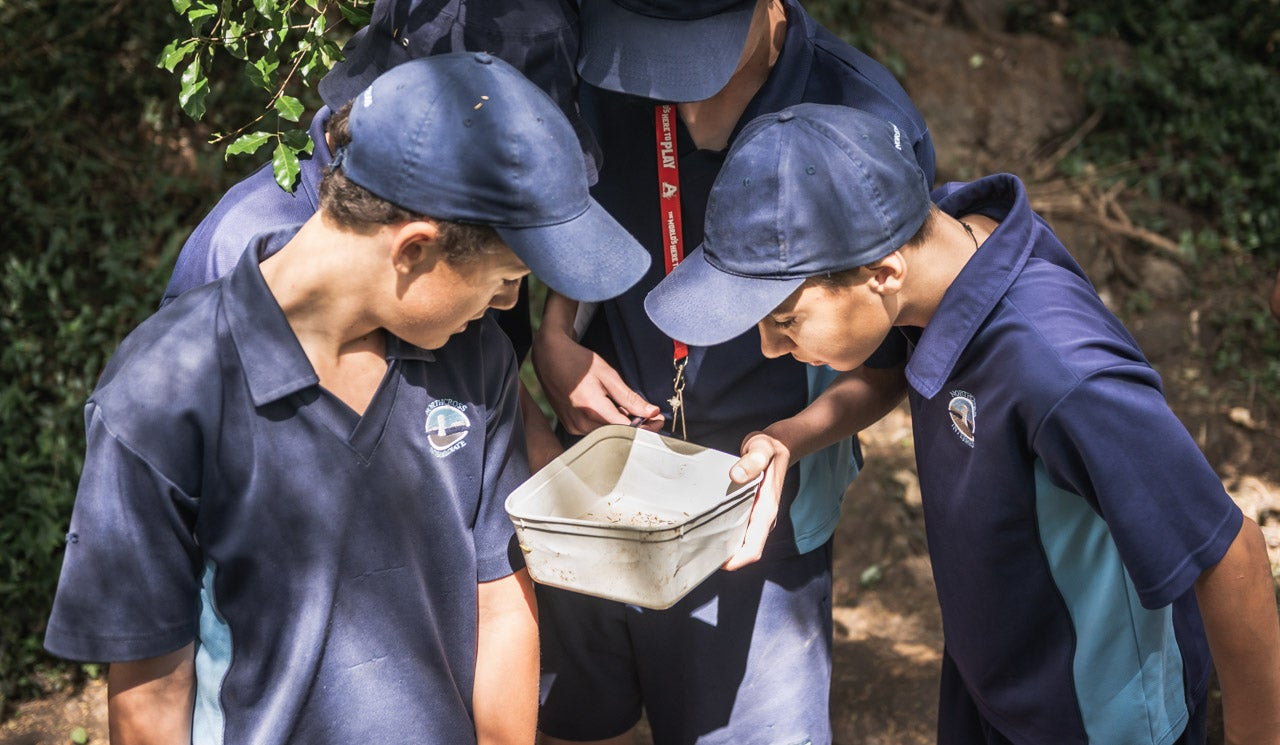 Northcross Intermediate School students observe a water sample taken from their local stream in Sherwood Reserve.