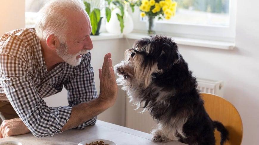 Australian senior at home with pet dog