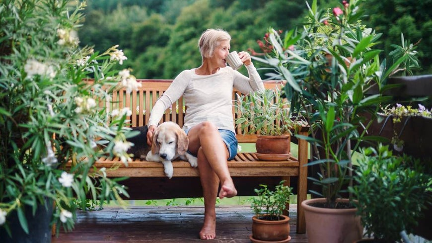 Older woman drinks tea in garden seat with dog on sunny day