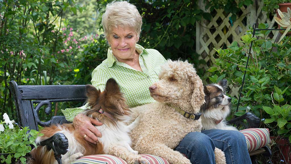 Benefits of owning a pet for over 50s