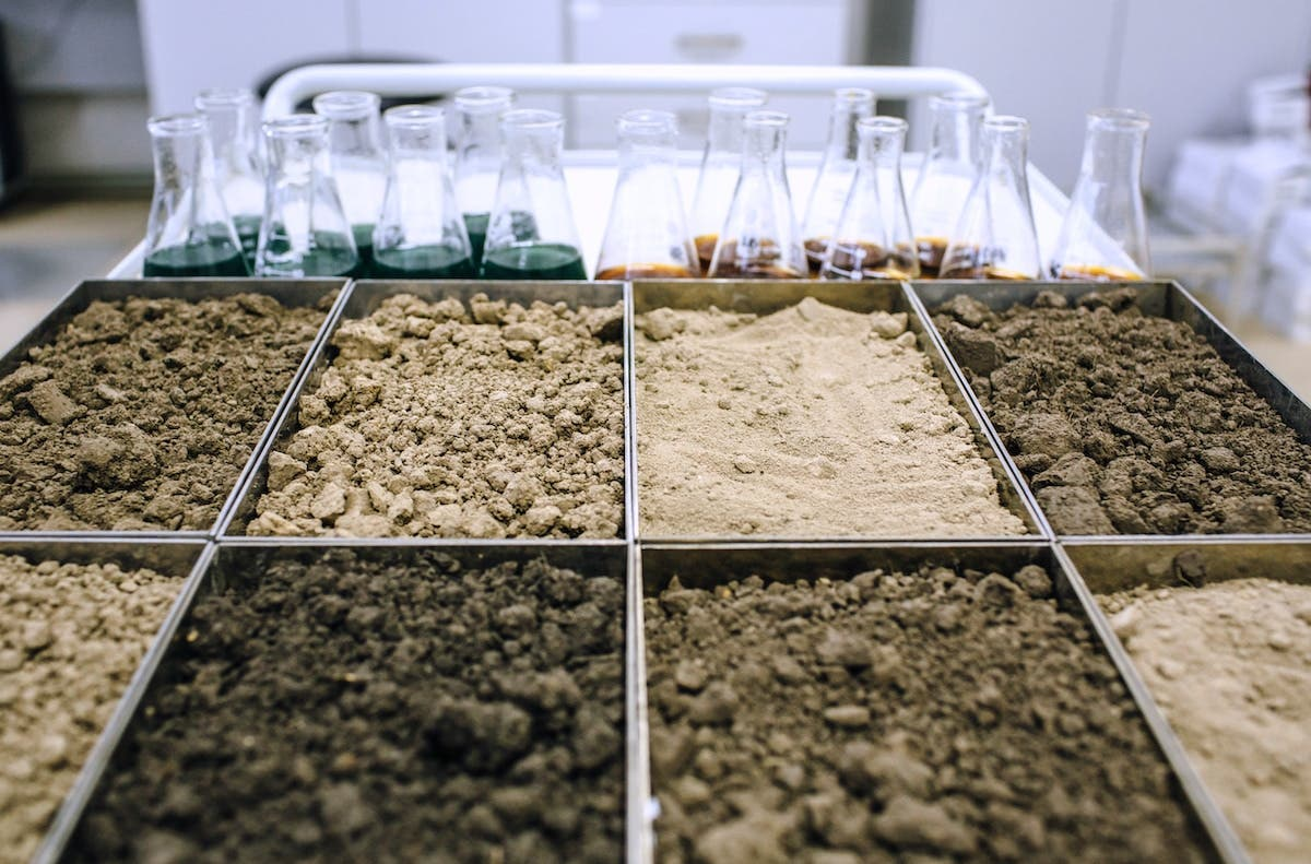 Assortment of different soils for testing