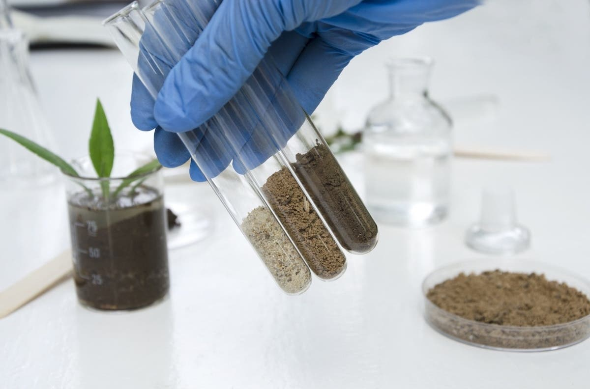 Scientist holding three test tubes with different soils in each