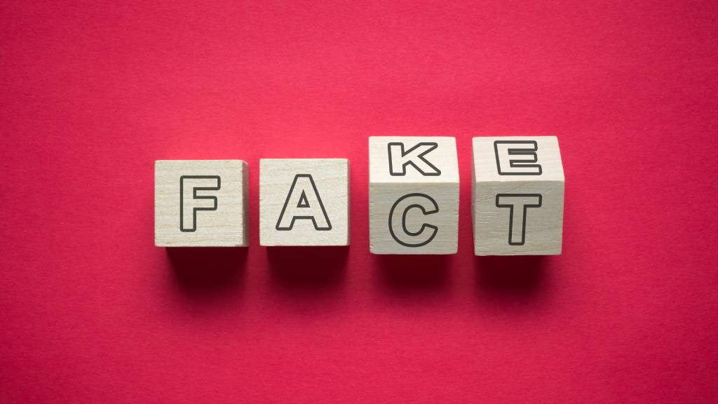 "letter blocks spelling the words ""Fake"" and ""Fact:"