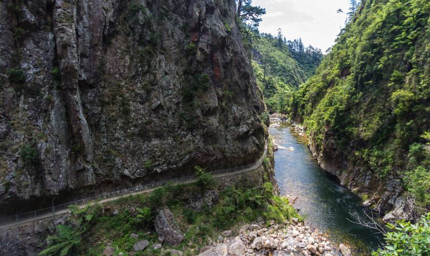 The Karangahake Gorge Historic Walkway