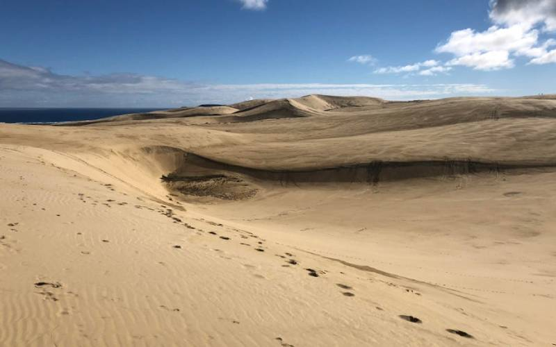 The Giant Te Puki Sand Dunes on the road to Cape Reinga north of Auckland