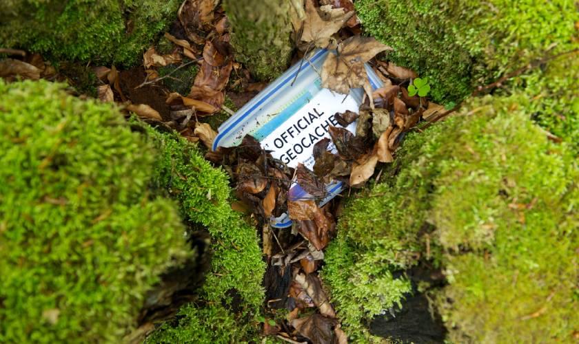 geocaching container hidden in mossy rocks