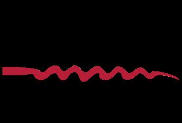 Wine Selectors colour logo | Devotion
