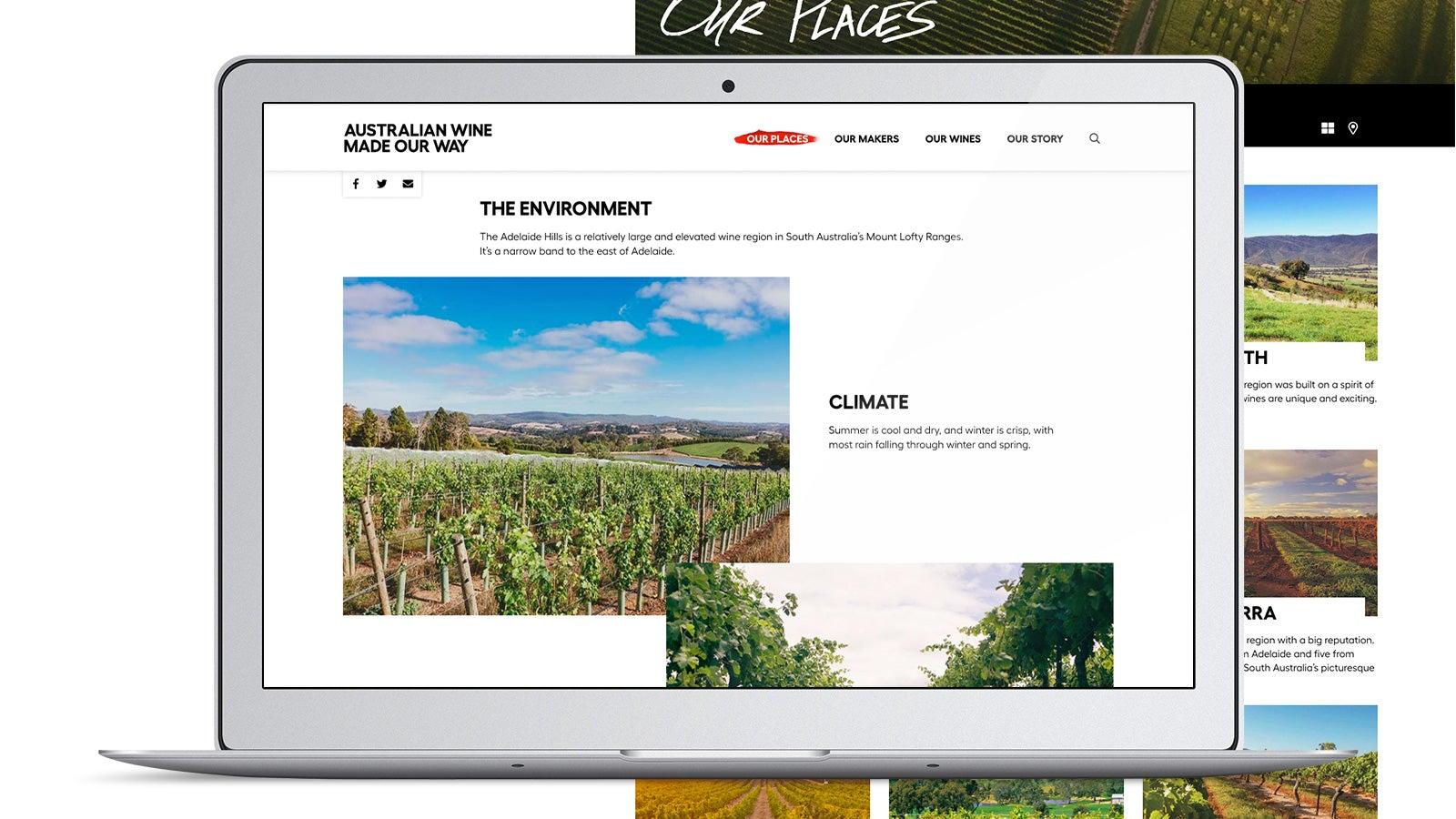 Australian Wine   laptop website   Devotion