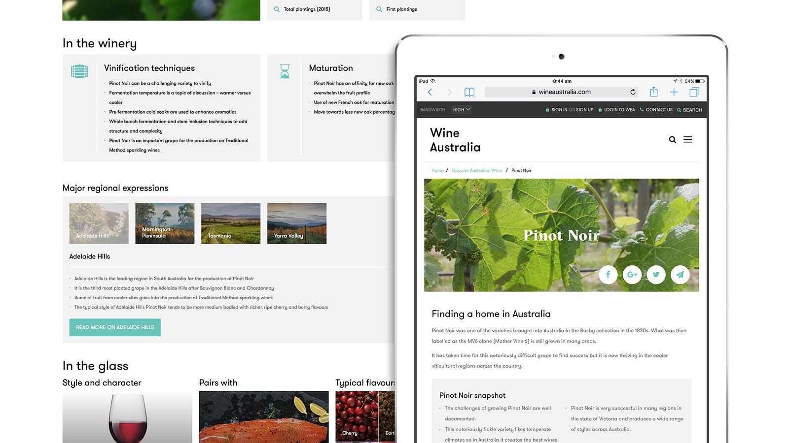 Wine Australia   Pino Noir information page shown on an iPad   Devotion
